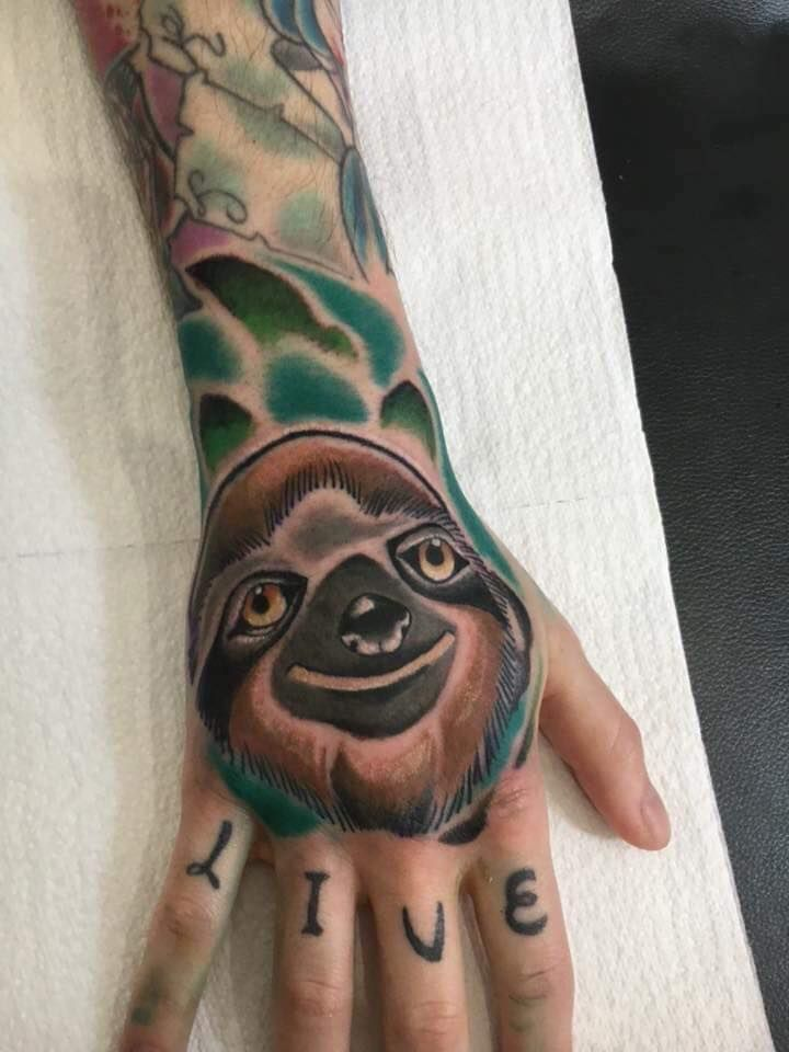 View Sloth on hand by Chris Webley