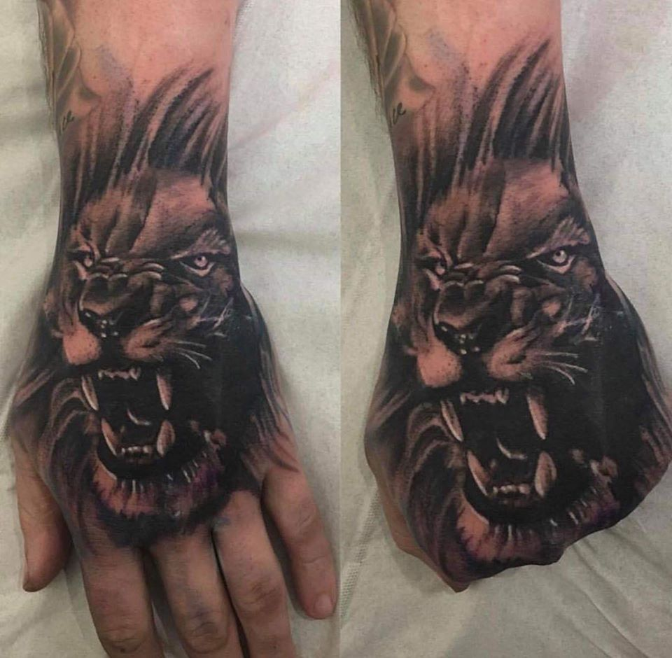 View Lion on hand by Chris Webley